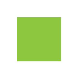 Heavy Max